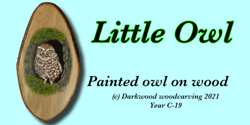 Little Owl Painting on wood Numbered and signed very cool prints wildlife Tall Ships Military Kandahar Prints